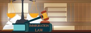 immigration law cover